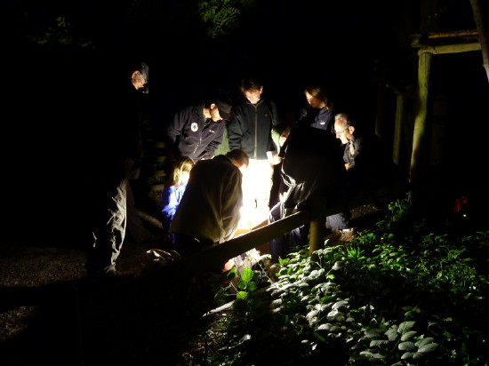 Moth Night 2012 event at Paignton Zoo