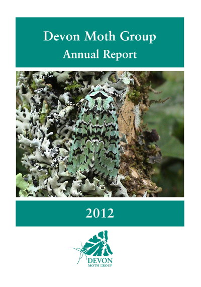 DMG Annual Report 2012 cover_1